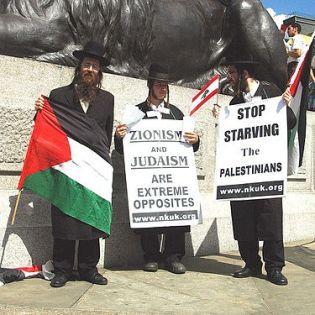 judíos propatestinos -Miembos del grupo judío ortodoxo antisionista y propalestino Neturei Karta con pancartas en las que pone Judaísmo y sionismo son extremos opuestosy Detener el hambre de los palestinos.