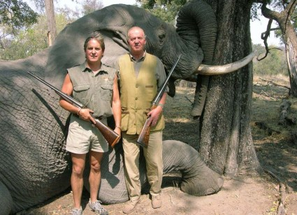 Rey elefantes