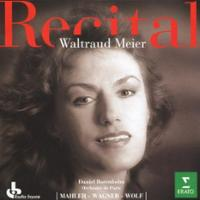 meier - mahler-kindertotenlieder-wagner-wesendonck-lieder-wolf-3-meier-cd-cover-art