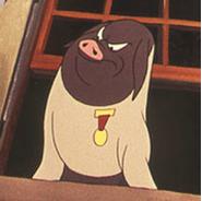 napoleon cerdo