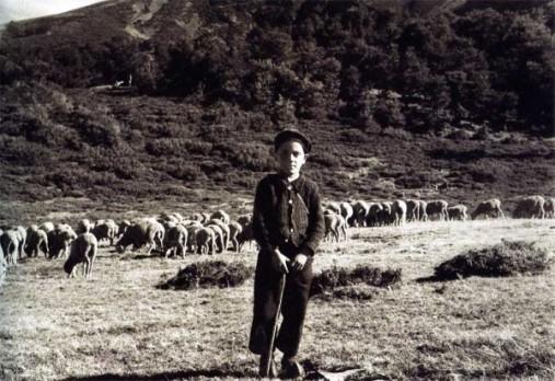 pastor-niño-e1361276788202