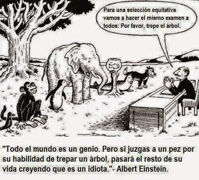 examen-animales-selva