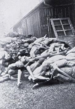 mauthausen iuy