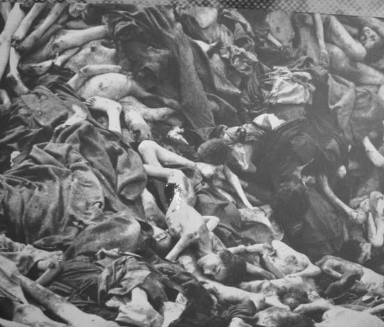 mauthausen oi iu