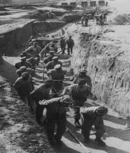 mauthausen yt6