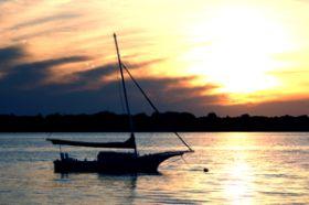 barca alba
