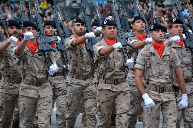 desfile-fuerzas-armadas-2014-11