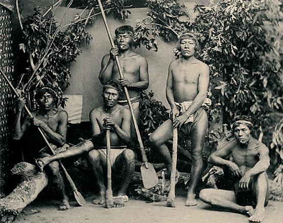 indis guaranis