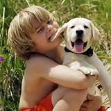 cachorr con niño